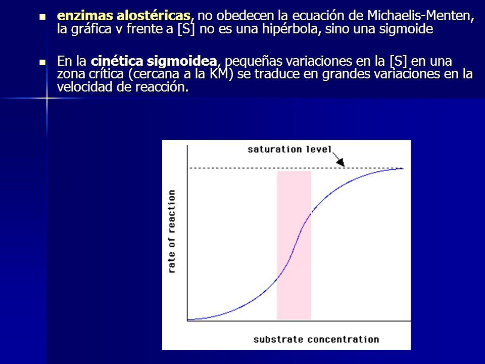 enzimas alostéricas, no obedecen la ecuación de Michaelis-Menten, la gráfica v frente a [S] no es una hipérbola, sino una sigmoide